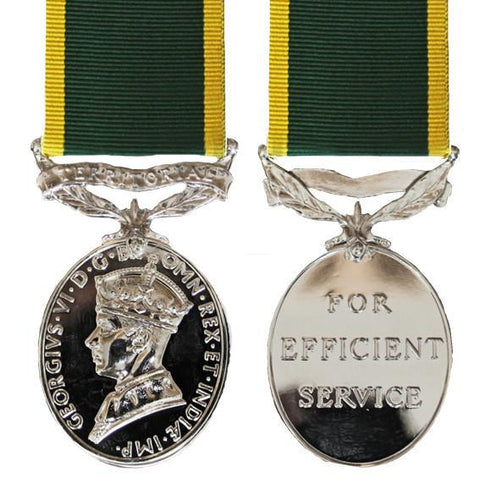 Efficiency Medal - Solomon Brothers Apparel