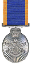 Load image into Gallery viewer, Reserve Force Medal - Solomon Brothers Apparel