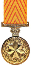 Load image into Gallery viewer, Medal for Gallantry - Solomon Brothers Apparel