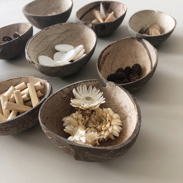 Coconut Sorting Bowls