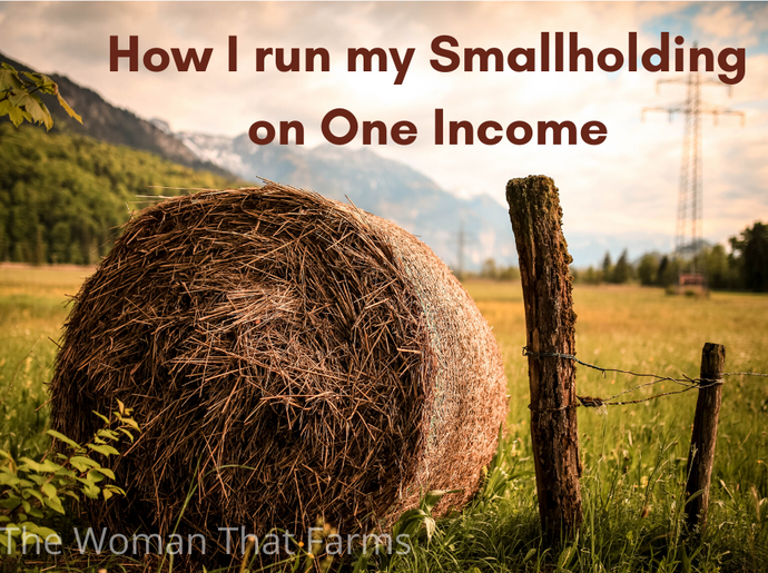 How I run my Small Farm on One Income (Part One)