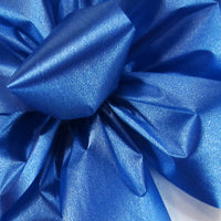 "Outdoor Poly Satin Ribbon Blue (#40-2.5""Wx100Yards)"