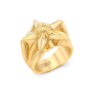 Cross'n Star Ring 14K Yellow Gold