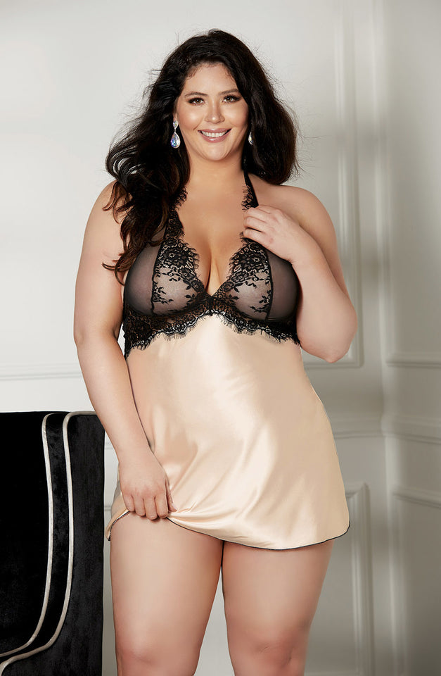 X31511 Set Chemise Plus Size Blush/Black by Shirley of Hollywood