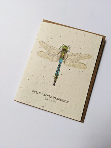 a plantable seed card - the card has a textured look from the seeds imbedded in the paper. There is a dragonfly drawing on this one that says