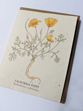 "Load image into Gallery viewer, a plantable seed card - the card has a textured look from the seeds imbedded in the paper. There is a yellow floral drawing on this one that says ""California Poppy - Eschscholzia Californica"""