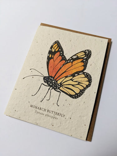 a plantable seed card - the card has a textured look from the seeds imbedded in the paper. There is a butterfly drawing on this one that says