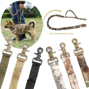 DogWalkPro Dynamic Bungee Dog Leash - WoofAddict
