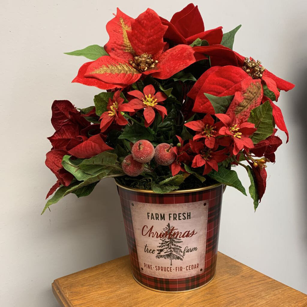 Poinsettias in Plaid Bucket
