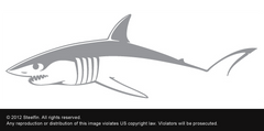 Mako Decal – Large