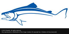 Steelfin Striper Decal - Blue
