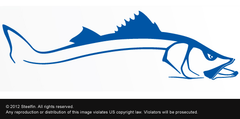 Steelfin Snook Decal - Blue