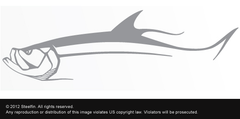 Steelfin Tarpon Decal - Silver