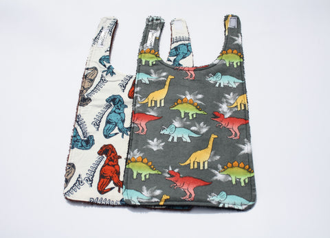 Long Bib Set - Dinosaur Theme