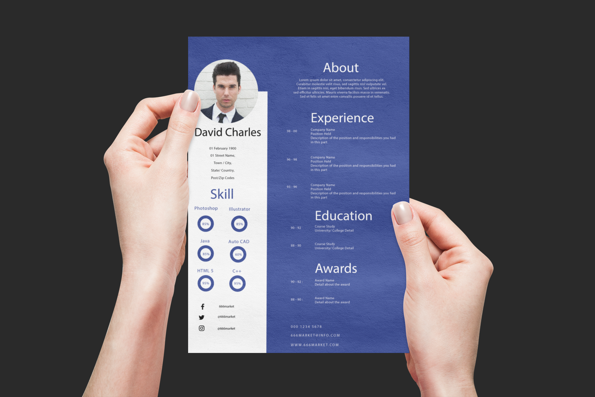 Professional CV Template For All Type of Professionals. Presented Print Template for Resume/ CV Purposes