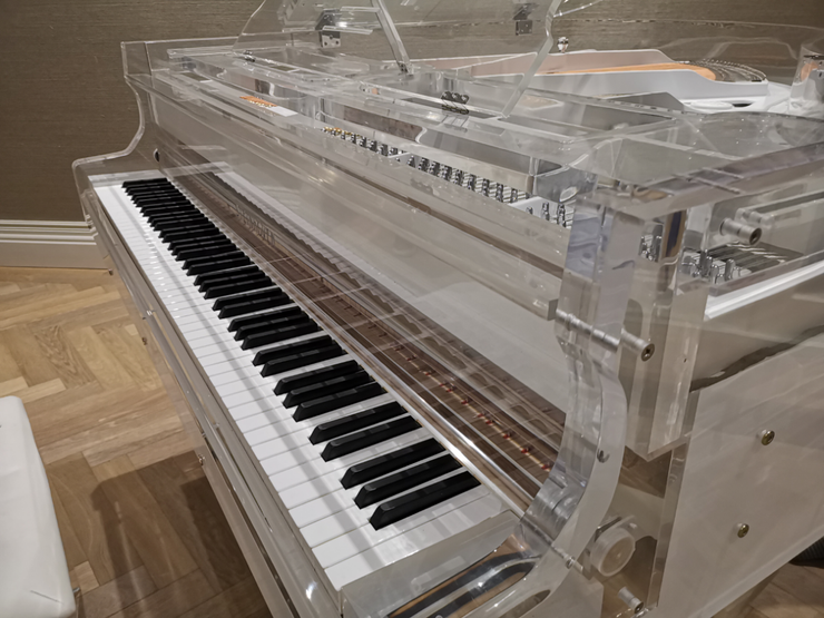 Acoustic Transparent SELF PLAYING Baby Grand Piano
