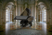 BUILD SLOT AVAILABLE - Swarovski Crystal Black Panther Designer Piano