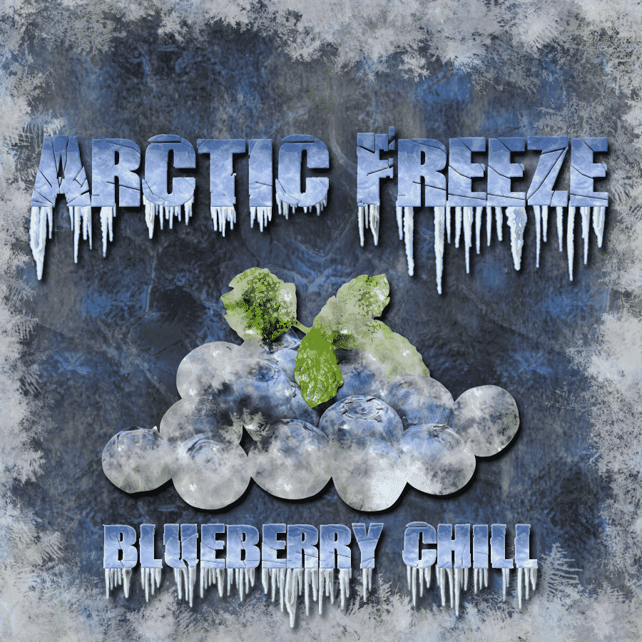 Arctic Freeze - Blueberry Chill - CravingVapes