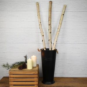 WHITE BIRCH POLE