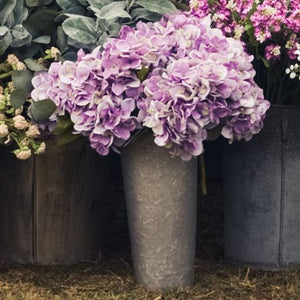 "15"" Deep Purple Hydrangea Stem - Simply Susan's"