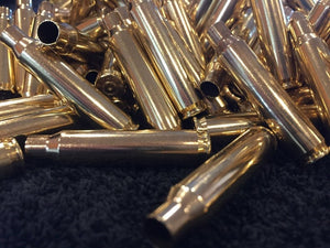 Polished Brass Casings 223