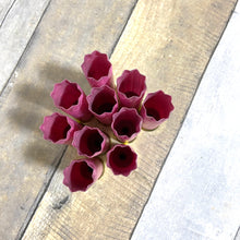 Load image into Gallery viewer, Empty Shotgun Shells Pink Star Crimp