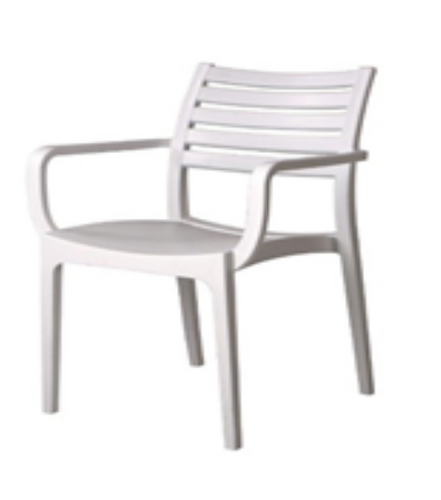Great Life Indoor/Outdoor Chair