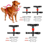Zee.Dog Blocks Harness talla