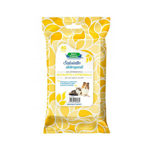 Best Friend Eucalyptus wipes