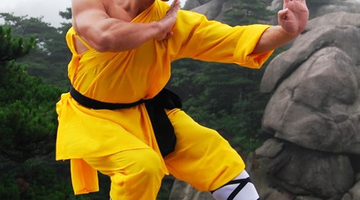From Shaolin Kung Fu to Okinawan Tōde