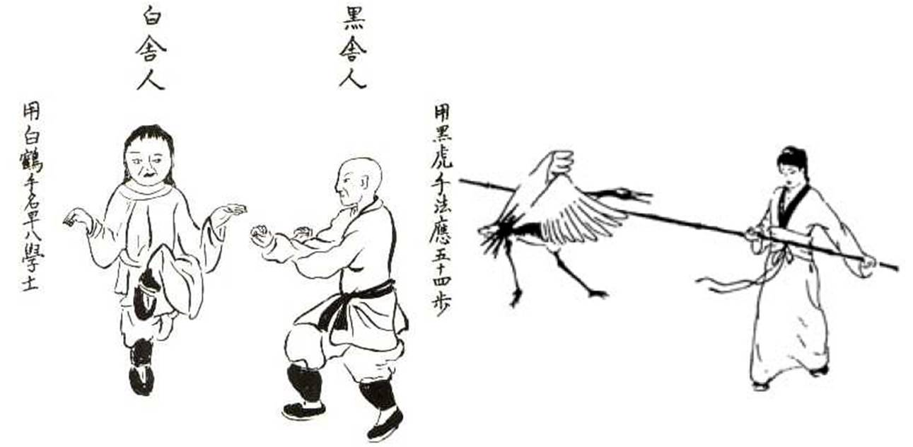 Photo 11 Courtesy: Wiki Commons, Illustration of the Fujian White Crane style of Kung-Fu.