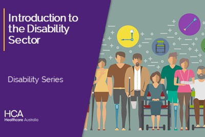 Introduction to the Disability Sector