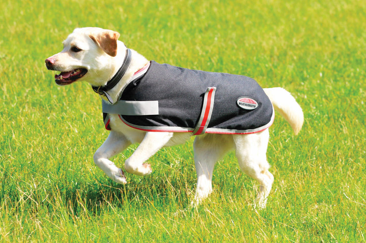WeatherBeeta 1200D Therapy-Tec Hundemantel, BLACK/SILVER/RED