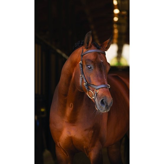 Horseware Rambo Micklem Multi 3 in 1 Trense