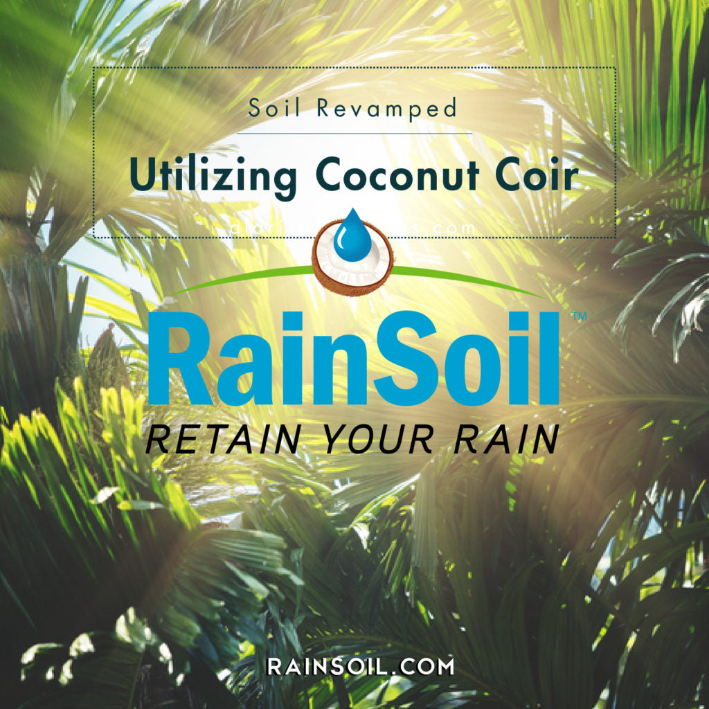 Soil Revamped: Utilizing Coconut Coir | RainSoil