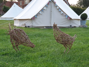Weave your own chicken - Saturday 10th October 2020