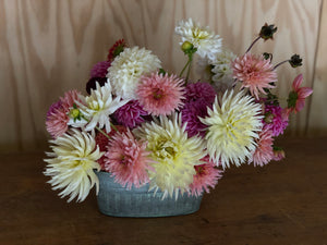 Dazzling Dahlia Display Workshop - Saturday 19th September 2020