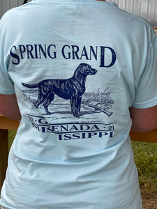 Post Spring Grand 21-Ladies Short Sleeve V-neck T-Shirt - Southern Bred