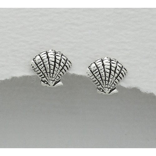 Sea Shell Sterling Silver Earrings