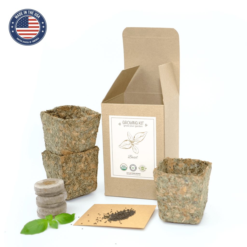 EcoGrass Basil Growing Kit