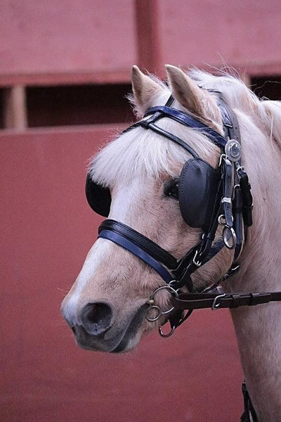 Do You Have To Use Blinkers When Driving Your Horse?