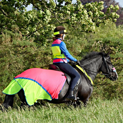 How to Stay Safe and Be Seen with Equisafety's High-Viz