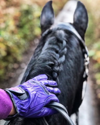 eEquest Riding Gloves Through the Ears