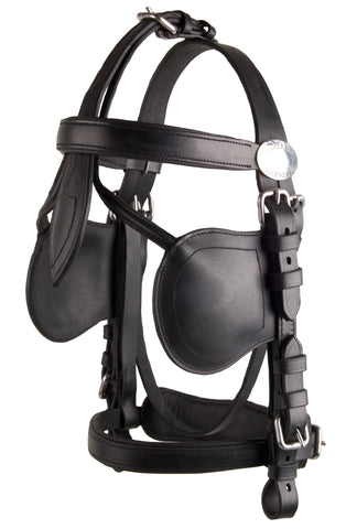 Ideal Leathertech Bridle