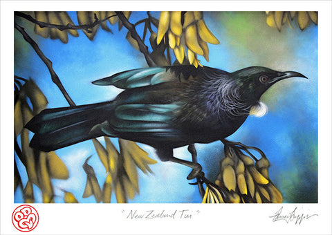 """New Zealand Tui""Open edition museum grade archival print"