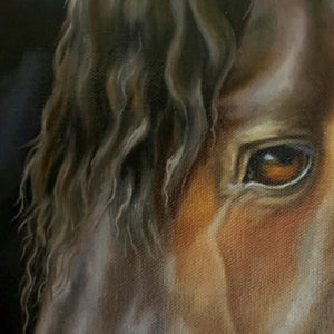 """Calm"" Friesian Horse Original Oil Painting"