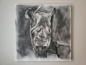 """Threatened"" - Rhino Charcoal Painting 24"" x 24"" x 1.5"""