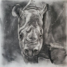 "Load image into Gallery viewer, ""Threatened"" - Rhino Charcoal Painting 24"" x 24"" x 1.5"""
