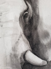 Load image into Gallery viewer, Elephant charcoal painting by Renee Fukumoto detail right eye and tusk