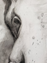 Load image into Gallery viewer, Elephant charcoal painting by Renee Fukumoto detail left eye